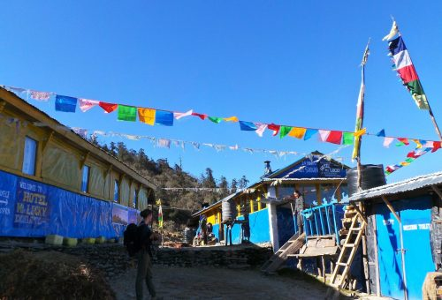 Woman standing in front of the blue lodges in Dobato in Nepal