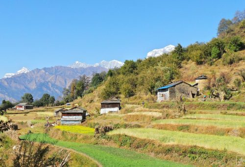 Houses and fields of Swanta in Nepal