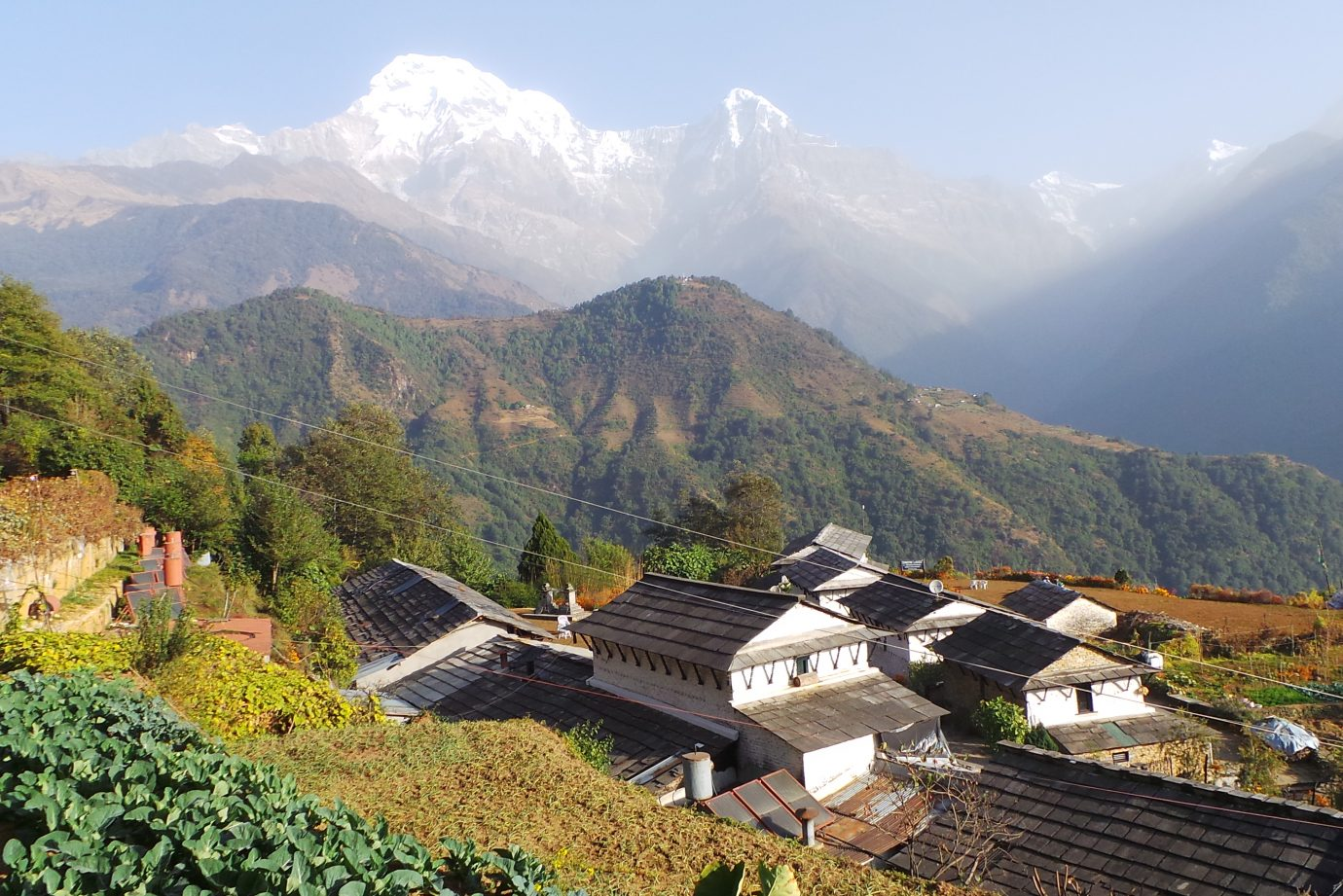White houses in the village of Ghandruk in Nepal