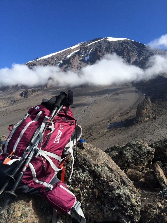 Pink rucksack lying on a rock in front of Kilimanjaro