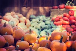 Orange pumpkins being sold in a market