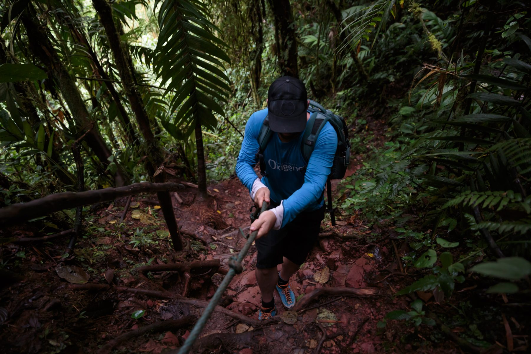 Man hiking up in the jungle and using his hands to pull himself up with a rope.