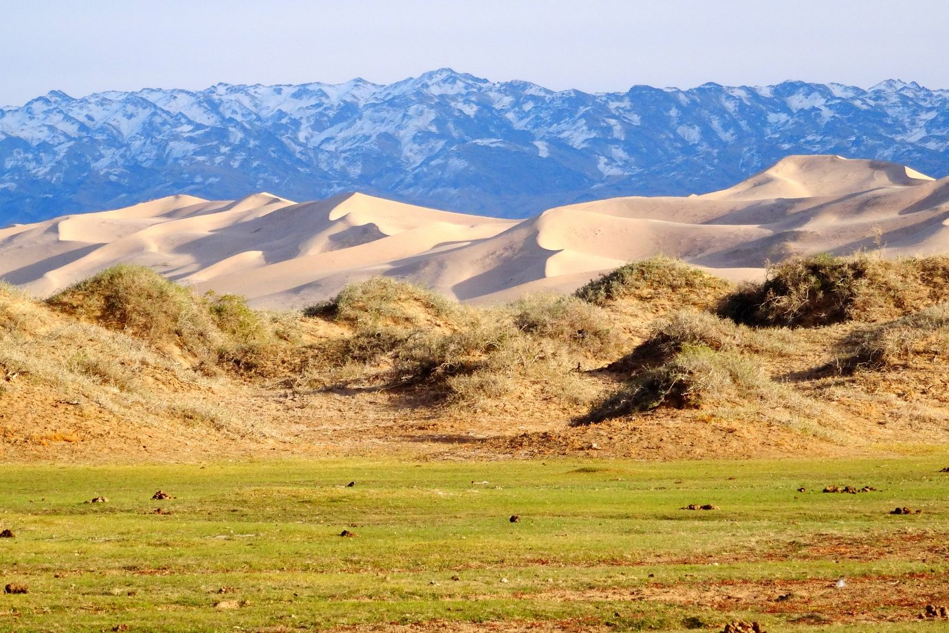 Green grass, sand dunes and snowy mountain range