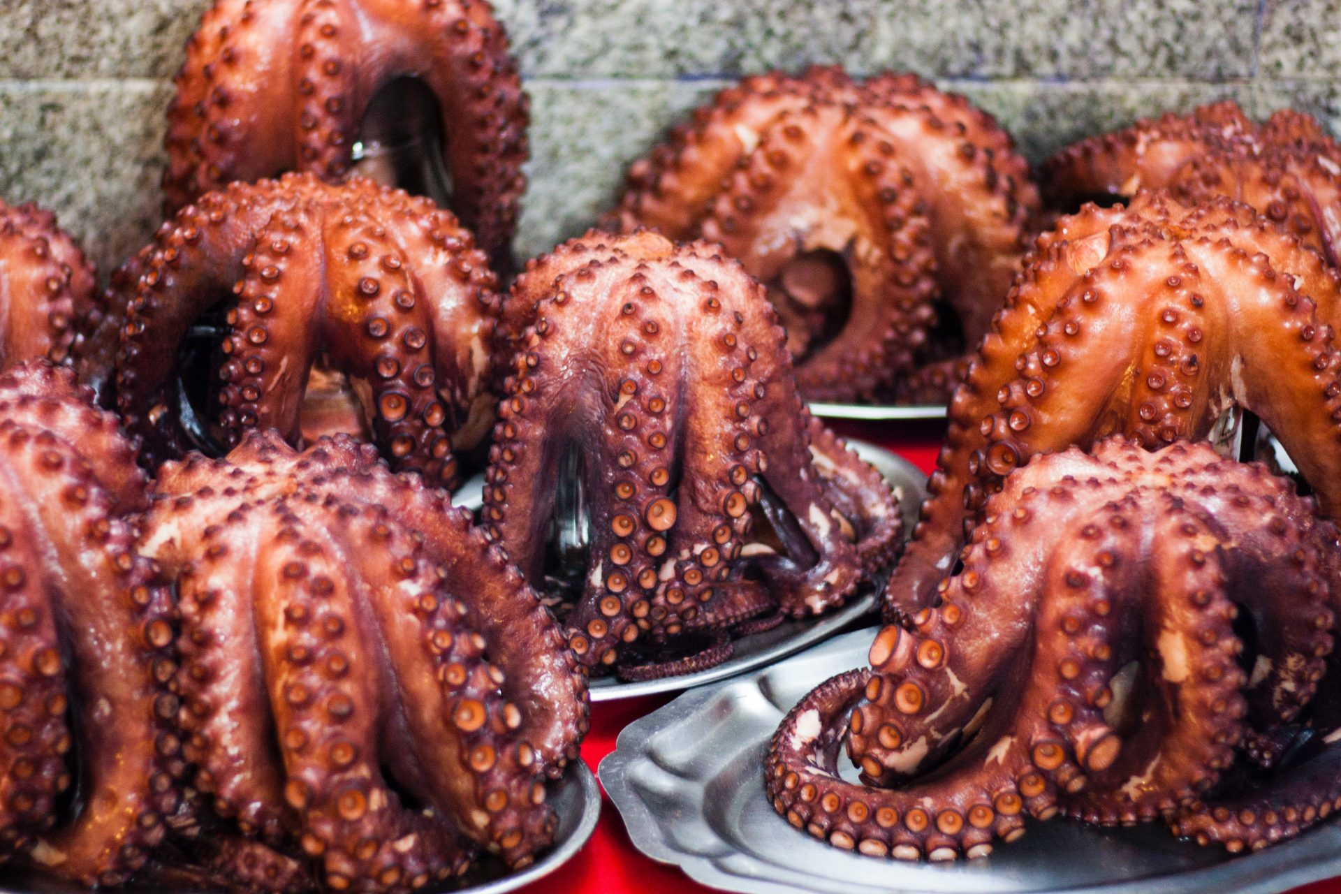 Bunch of octopus on plates.